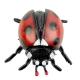 ست فیگور حشرات و حیوانات سمی و قورباغه خارجی مدل 12 تکه Insects and Frog Set